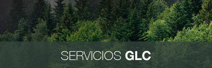 Servicios-Gcl2